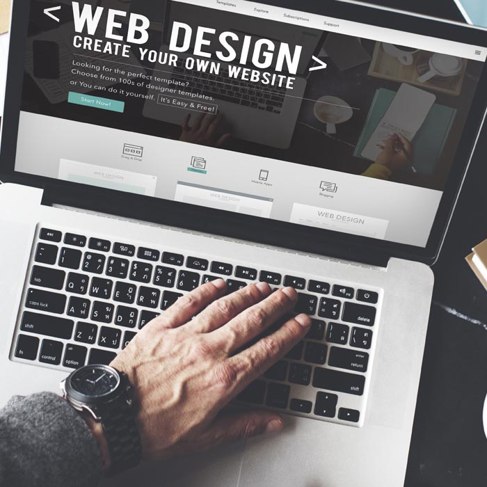 web design Easy Win Net